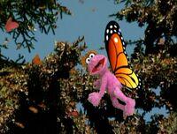 LolaButterfly