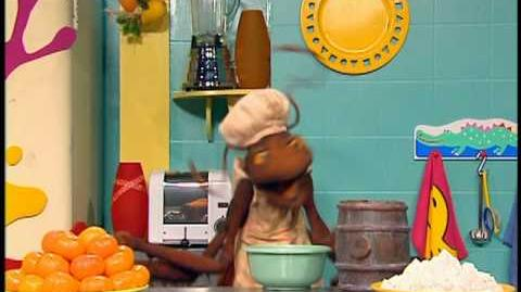 "Animal Show ""Colobus Monkey Flying Squirrel"""