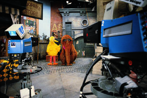 Big bird snuffy cameras