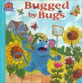 Thumbnail for version as of 15:24, September 9, 2008