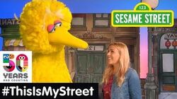 Sesame Street Memory Busy Phillips