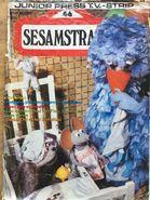 Sesammag461985