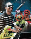 Stevie Wonder Muppet Magazine