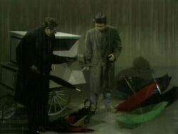 BuddyJim.umbrellas
