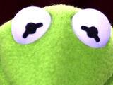 Kermit the Frog's eyes