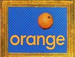 Sesame-English-Vegetable-Soup-orange