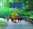 Episode 3810