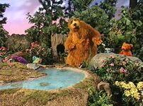 Bear120h
