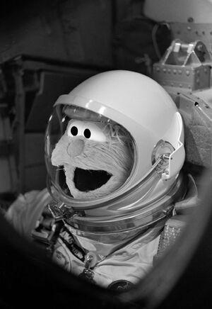 SS Facebook Rosita astronaut Jan 16 2018