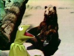 Kermit'sBearExc