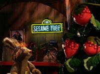 Sesame Tree 103
