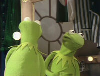 Kermit reflection TMS104