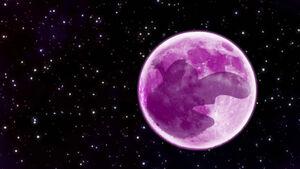 Planet G0N0 a