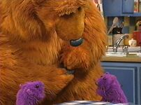 Bear229d