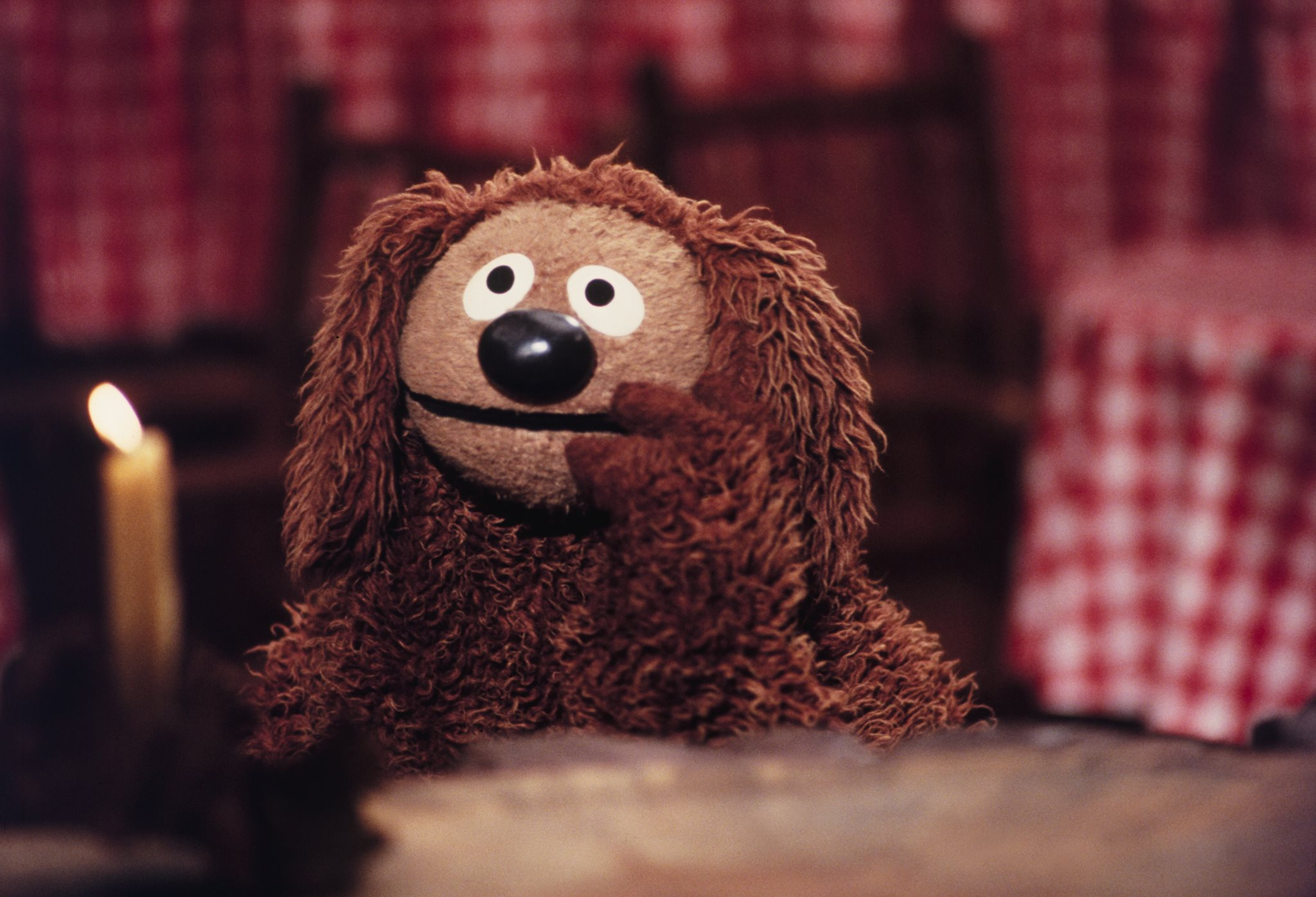 Image result for rowlf the dog