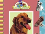 My First Book About Dogs