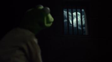 MMW Kermit moon