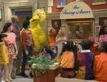 Sesame Street All-Star 25th Birthday: Stars and Street Forever!