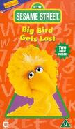 Bigbirdgetslost-disney