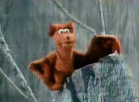 Character.brownbat
