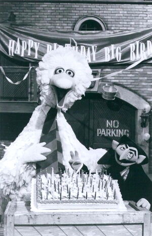 Big bird's birthday 1
