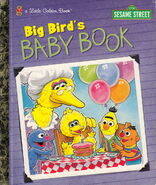 Big Bird's Baby Book
