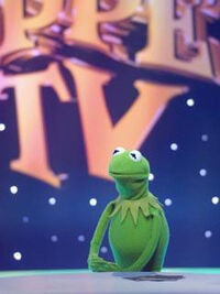 TF1-MuppetsTV-PhotoGallery-01-Kermit