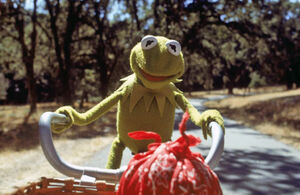 Kermit bicycle pov