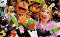 Slider-muppets