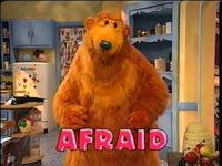 Bear302d