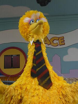 Bird President