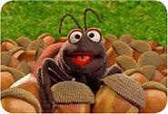 Elmo'sBackyard-Ant