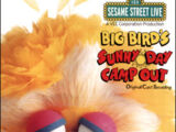 Big Bird's Sunny Day Camp Out (soundtrack)