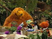 Bear424h