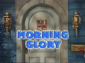 315 morning glory