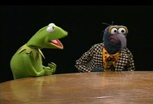 KermitGonzo-CharlieRose