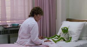 MTM-HospitalKermit
