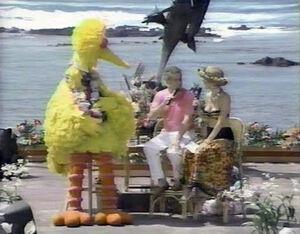 Big Bird on Live with Regis