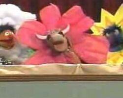Gladys-flower