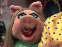 211 piggy apple
