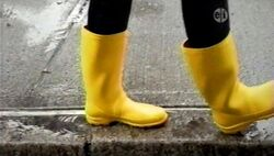 4229Galoshes