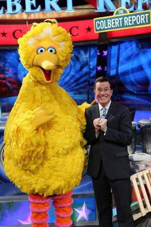 Colbert-BigBird