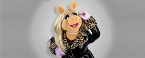 Piggy-ABCbio