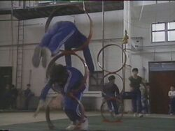 Acrobatschool