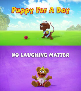 Puppy for a Day titlecard