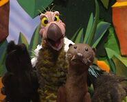 Seaotter-vulture