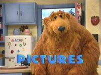 Bear213d