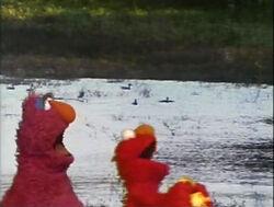ElmoTellyDucks