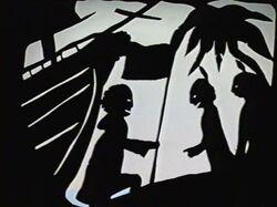 Shadow311