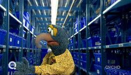 Qvc gonzo stockroom